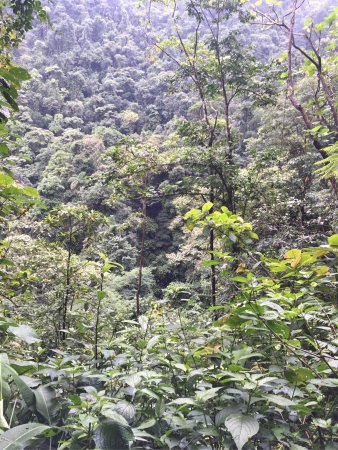 El Castillo, Costa Rica: View on the horseback tour