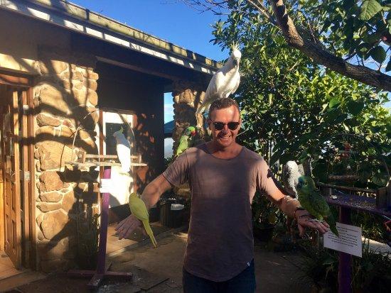 Maleny, Austrália: photo0.jpg