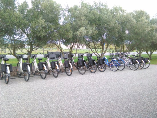 Renwick, Yeni Zelanda: The variety of different bikes on site to use