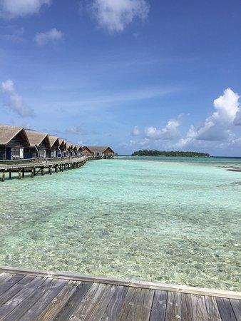 Cocoa Island by COMO: photo3.jpg