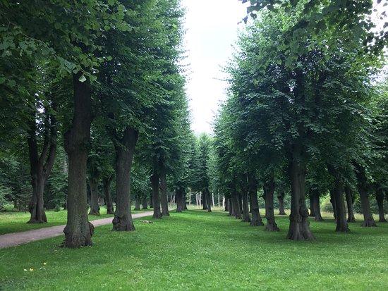Charlottenlund, Denmark: Хороший тихий парк, который явно очень любят собачники.