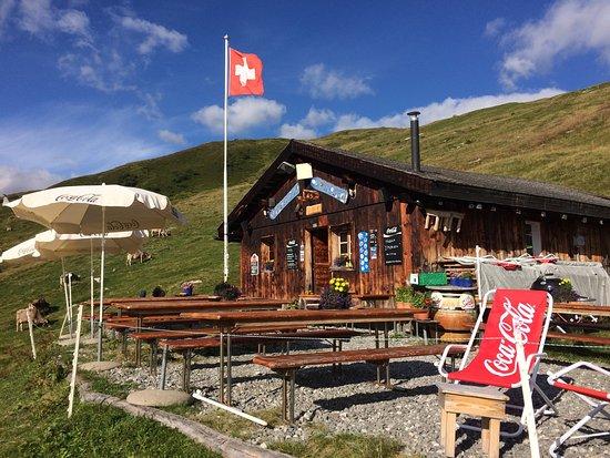 Sedrun, Switzerland: Liegestühle stehen bereit 😎☀️✌🏼