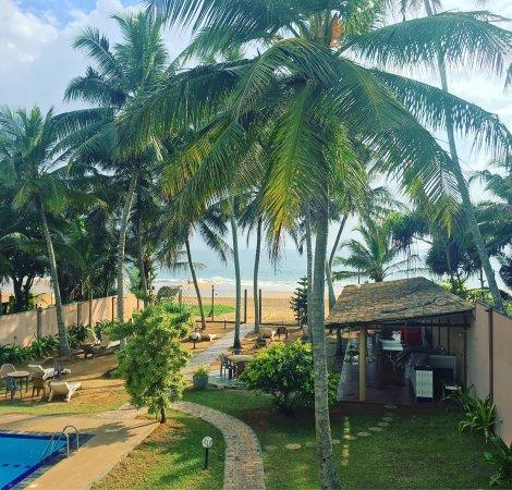 Hotel Ocean View Cottage: photo0.jpg