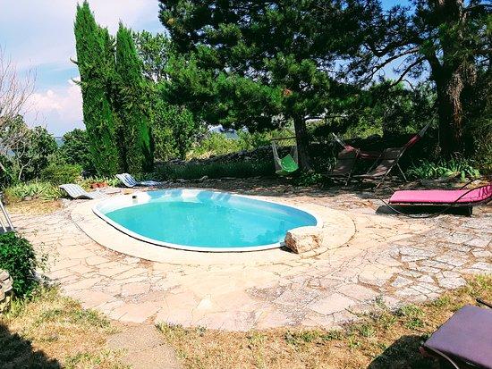 Viens, France: La piscina vista da un altro angolo