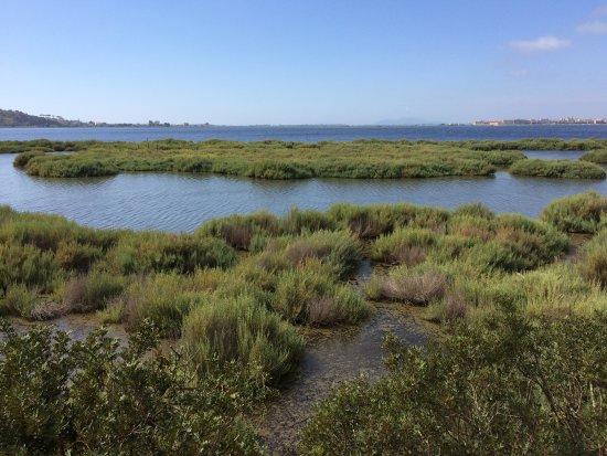 Vista della laguna, sullo sfondo Orbetello.