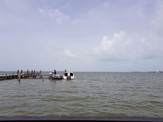 Club Calypso Seafood Restaurant: Vista a la Bahía