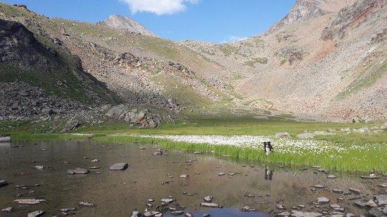 Charvensod, Italy: Il lago Gelé, raggiungibile con una passeggiata du un'ora e mezza circa