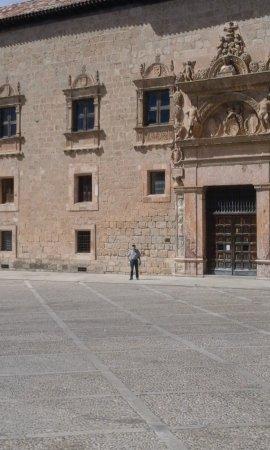 Penaranda de Duero, Spain: Palacio de Avellaneda