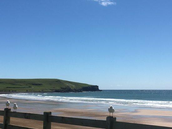Stanley, Australia: Nearby Godfreys Beach