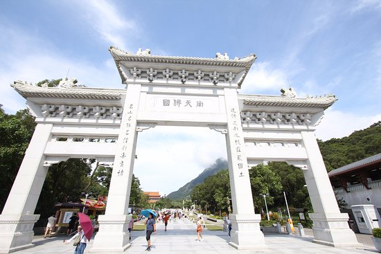 Po Lin (Precious Lotus) Monastery: 周邊風景