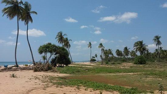Carte Sri Lanka Nilaveli.La Carte De Gomes Z Picture Of Gomesz S Pasta Hut