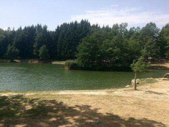 Lago foto di ristorante lago dei pontini bagno di romagna tripadvisor - Ristorante del lago bagno di romagna ...