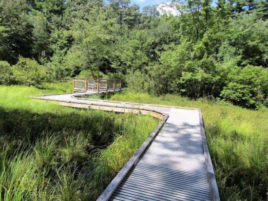 Acton, MA: walkway