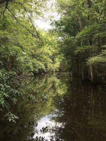 Harleyville, Karolina Południowa: photo4.jpg
