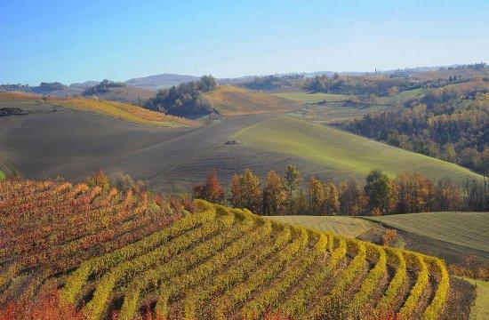 La nostra bellissima regione. Vista dal Bossolasco (Our gorgeous region. View from Bossolasco)