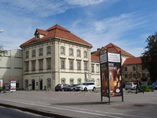 Radvilos Palace (Radvilos Rumai)