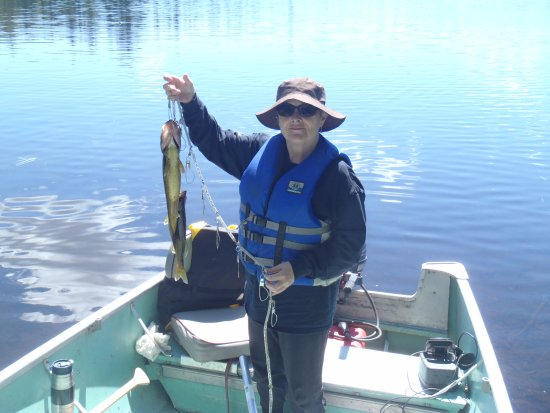 Chapleau, แคนาดา: Fish I caught on Sideburned Lake...I also caught and released 8 Northern Pike that day.