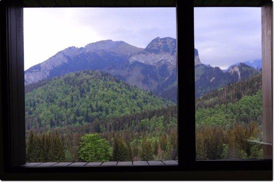 Tatranska Javorina, Slowakije: Second floor room view