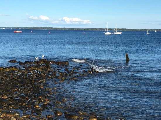 Lincolnville, ME: A view from the parking lot