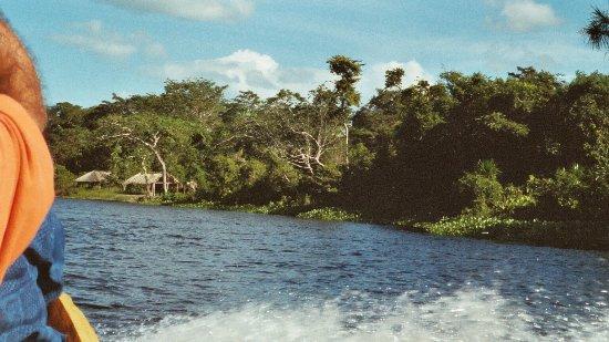 Дельта реки Ориноко, Венесуэла: travel on boat