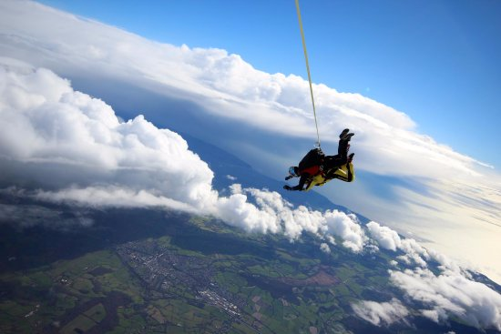 Skydive Buzz Ltd