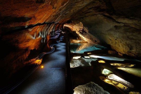 Grotte de la Cocalière