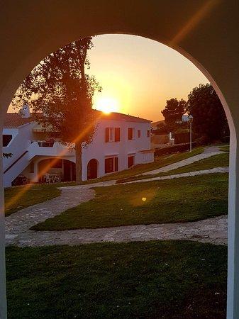 Sunset over gardens