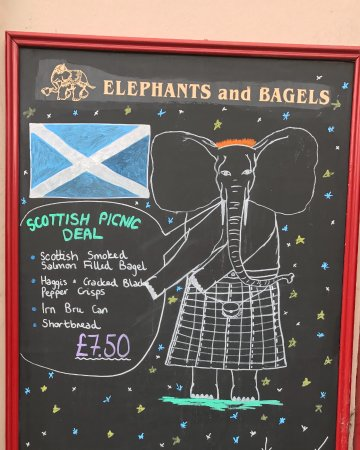Elephants & Bagels: Hard To Resist