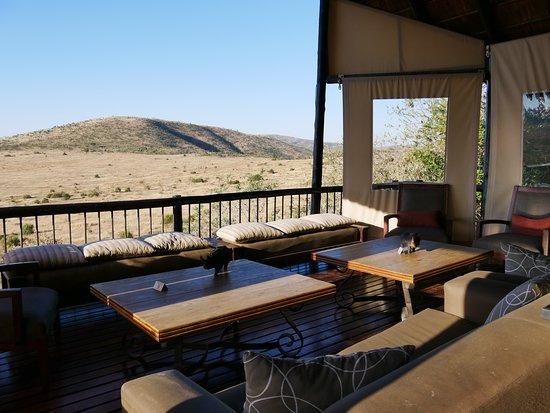 """Tshukudu Bush Lodge: Safari mit der besten """"Rangerin"""" ❤ und unsere lodge"""