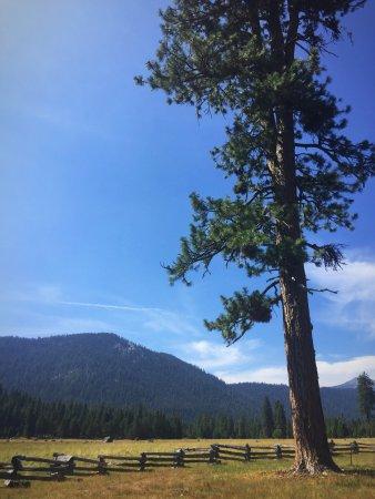 Mill Creek, Kalifornien: Enjoying Highlands Ranch Resort!