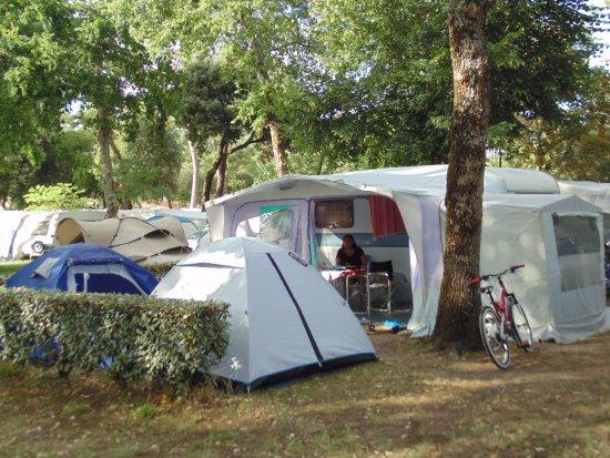 Merveilleux Camping Les Genets (Ronce Les Bains, France)   Tarifs 2019 Mis à Jour Et  Avis Camping   TripAdvisor