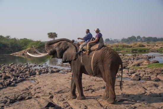 Victoria Falls, Zambia: Big Danny!