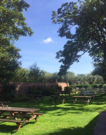 Pershore, UK: Beer Garden - view to the River