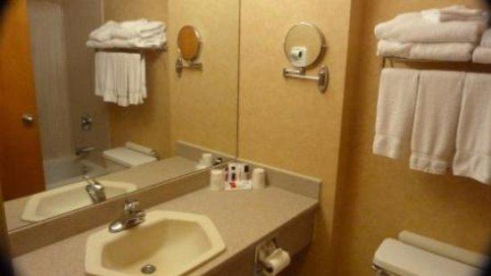 Canmore Inn & Suites: bathroom