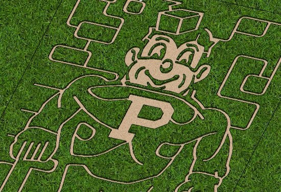 Battle Ground, อินเดียน่า: very well done!!  Purdue Pete corn maze!