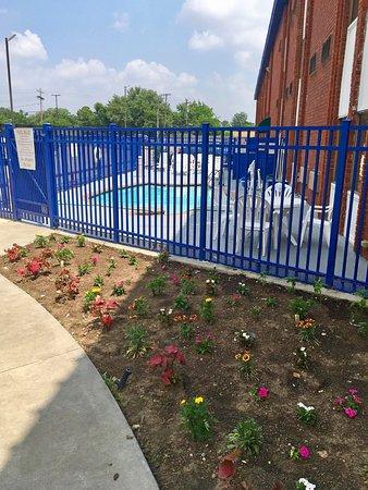Americas Best Value Inn & Suites-Irving/Dallas: Pool