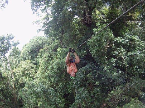 Chiclets Tree Zipline : Crazy kid ziplining upside down.