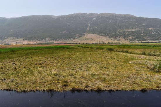 Bekaa Governorate, Lebanon: Aammiq Wetland, West Bekaa nice place for Hiking and Biking.