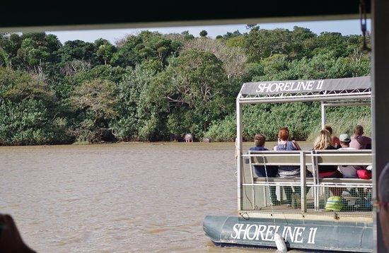 S:T Lucia, Sydafrika: Barcaza para ver los animales en el estuario