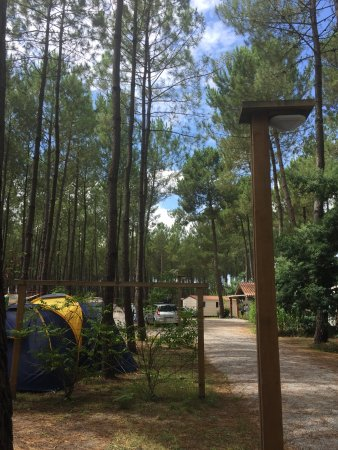 Camping L'Océane : photo6.jpg