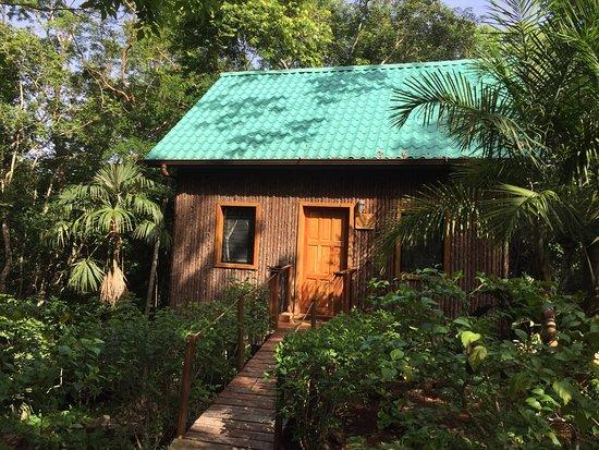 Mariposa Jungle Lodge: Private suites!