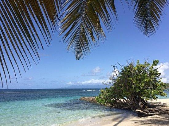 Club Med La Caravelle: vue de la plage