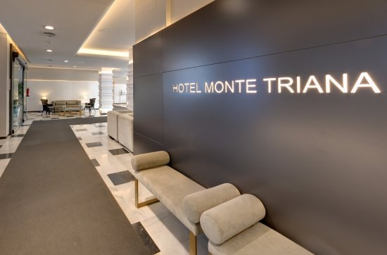 Monte triana hotel updated 2018 reviews price comparison seville spain tripadvisor - Hotel montetriana sevilla ...
