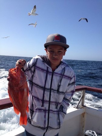 Marina del rey sportfishing 2018 all you need to know for Marina del rey fishing charter
