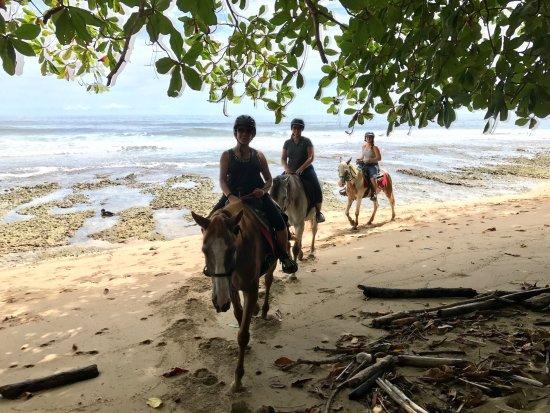 Cocles, كوستاريكا: photo2.jpg