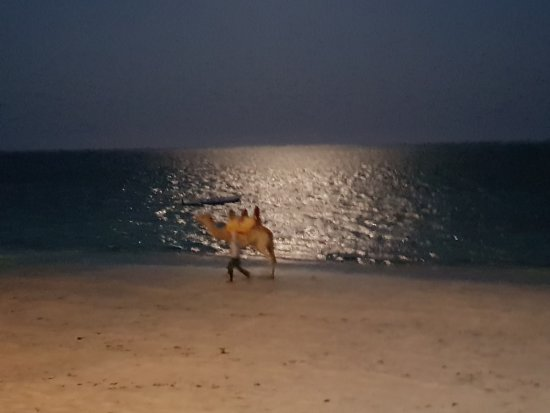 Nyali Beach: Beauty-full-moon