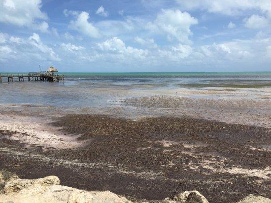 Seashell Beach Resort Marathon Key