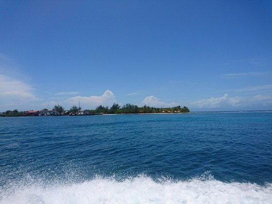 Utila, Honduras: Leaving for a dive!