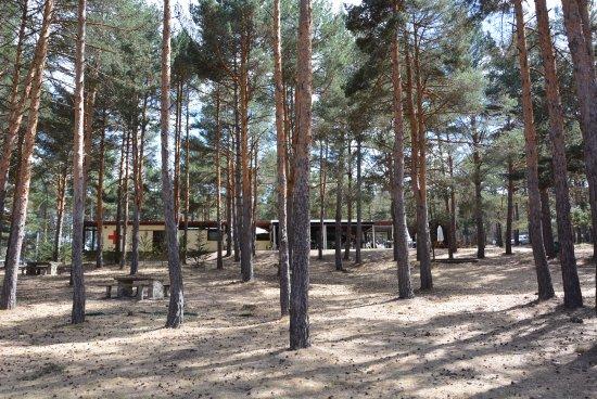Aguilar de Campoo, Spain: entorno viarce laplaya