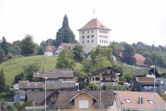 Gelfingen, Швейцария: Schloss Heidegg